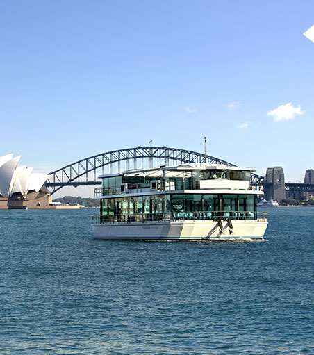 oz whale watching sydney harbour lunch